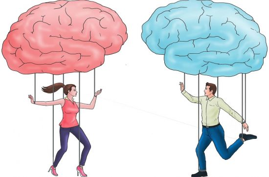 Razlike između muškog i ženskog mozga